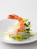 A prawn on courgette salad