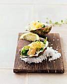 Gratinierte Austern im Spinatblatt