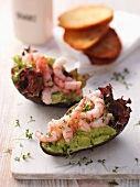 Avocado boats with prawns