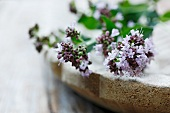 Marjoram with flowers in a wooden bowl (close-up)