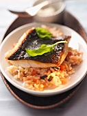 Turbot fillet on a colourful vegetable risotto