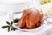 Festive roast goose