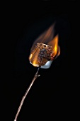 Burning Marshmallow on a Stick