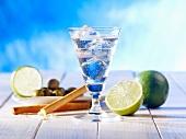 Martini mit Eiswürfeln, Limetten, Oliven und Grissini