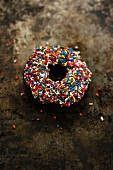 A chocolate doughnut with colourful sugar sprinkles