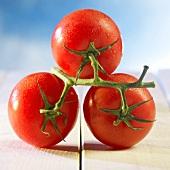 Three fresh, wet vine tomatoes
