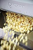 A popcorn machine