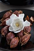 Eine frische und mehrere getrocknete Gardenienblüten
