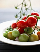 Fresh vine tomatoes on a plate