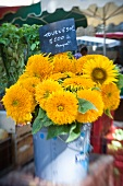 Sunflowers in a bucket on a market stall