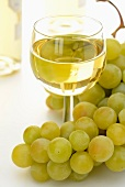 A glass of white wine with a bunch of green grapes