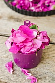 Pinkfarbene Rosenblütenblätter