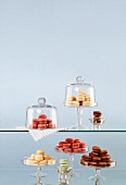 Various macaroons on cake stands