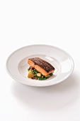 Salmon fillet on a bed of peas