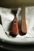 Vintage cutlery with wooden handles