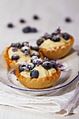 Blueberries tartlets with lavender flowers