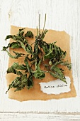Dried stinging nettles (Urtica dioica)