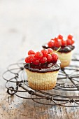 Cupcakes with red currants