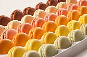 Rows of Assorted Macaroons