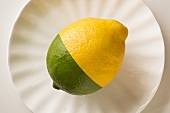 Half Lemon, Half Lime