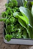 Fresh herbs for Frankfurt green sauce