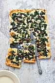 Majorcan vegetable pizza