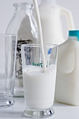 Milk Pouring into a Glass; Milk Jugs, Bottle and Empty Glass