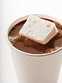 Cup of Hot Chocolate with a Marshmallow