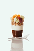 Chocolate and Plain Yogurt Topped with Granola and Fruit; In a Plastic Cup; Plastic Spoon