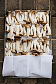 Fresh Horn Mushrooms on a White Napkin Lined Sheet Pan