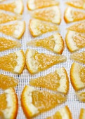 Orange Slices on a Dehydrator Sheet