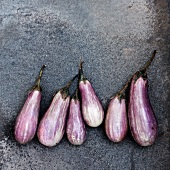 Baby Eggplant in a Row on Stone; From Above