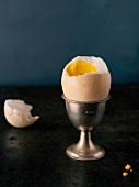 Gekochtes Entenei im Eierbecher