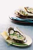 Ostriche al burro aromatico (oysters with herb butter)