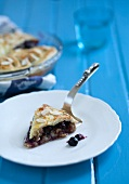 Piece of Blueberry Pie with Pie Server on a Plate