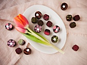 Gourmet Spring Chocolate with a Tulip; From Above