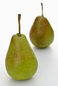 Two Gute Luise pears