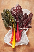 Chard with colourful stems on a piece of paper
