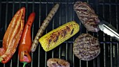 Peppers, a sausage, a corn cob, a hamburger and a steak on a barbecue