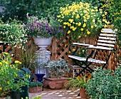 Balkon mit Holzgeländer und strahlender Blütenpracht im Sonnenlicht