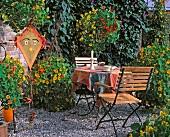 Gartenterrasse mit blühender Kapuzinerkresse