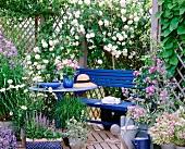 Blauer Bank mit Tisch, blühende Kletterrosen und Lilien in einem Gartenpavillon