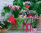 Farbenfroher Balkon mit frühlingsgrünen Akzenten