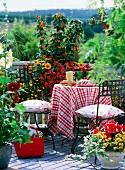 Spätsommerlich blühender Balkon mit fröhlicher Tischdecke auf dem Balkontisch