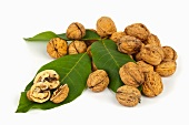 Whole and halved walnuts on walnut leaves