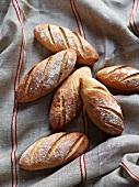 Fresh rye beer bread rolls