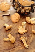 Hedgehog mushrooms