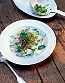 Romanian herb soup