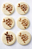 Cookies with patterns stencilled in cinnamon