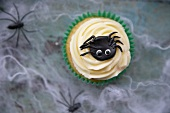 A cupcake decorated with light frosting and a marzipan spider